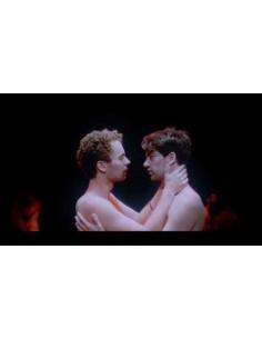 Theo et Hugo - Geoffrey Couët, François Nambot - DVD (2016)