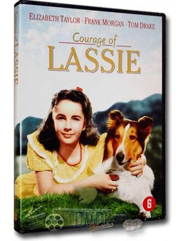 Courage Of Lassie - Elizabeth Taylor, Frank Morgan - DVD (1946)