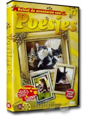 Poesjes 1 - Sientje, Rinus, Heidi en Theo - DVD