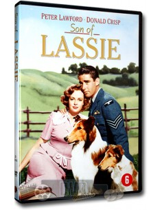 Son Of Lassie - Peter Lawford, Donald Crisp - DVD (1945)